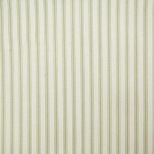 Fern Stripe Drapery and Upholstery Fabric by Pindler