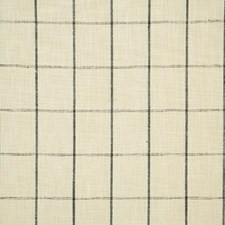 Thunder Check Drapery and Upholstery Fabric by Pindler