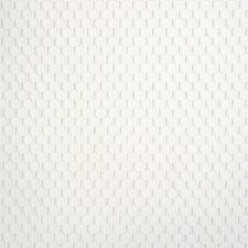 White Drapery and Upholstery Fabric by Silver State