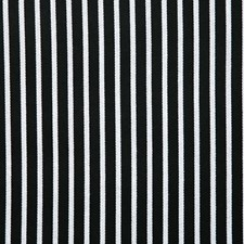 Ebony Stripe Drapery and Upholstery Fabric by Pindler