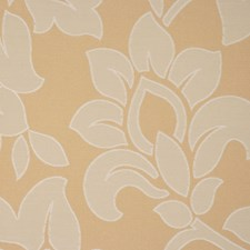Lemongrass Drapery and Upholstery Fabric by RM Coco