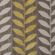 Citrus Leaf Drapery and Upholstery Fabric by Clarke & Clarke