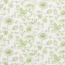 Apple Floral Vine Drapery and Upholstery Fabric by Clarke & Clarke