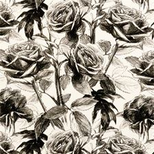 Black/White Floral Medium Drapery and Upholstery Fabric by Clarke & Clarke
