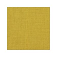 Citrus Solid Drapery and Upholstery Fabric by Clarke & Clarke