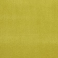 Lime Drapery and Upholstery Fabric by Clarke & Clarke