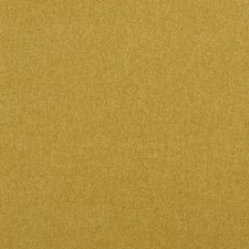 Gold Solid w Drapery and Upholstery Fabric by Clarke & Clarke
