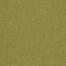 Gold Solids Drapery and Upholstery Fabric by Clarke & Clarke