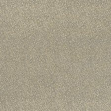 Taupe/Gold Solid w Drapery and Upholstery Fabric by Clarke & Clarke