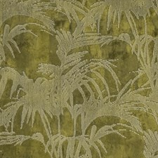 Citron Drapery and Upholstery Fabric by Clarke & Clarke
