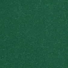 Vert Anglais Drapery and Upholstery Fabric by Scalamandre