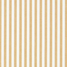 Goldenrod Drapery and Upholstery Fabric by Scalamandre