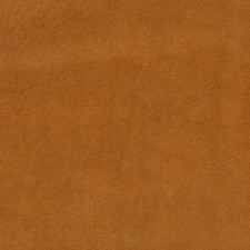 Spice Solids Drapery and Upholstery Fabric by Mulberry Home