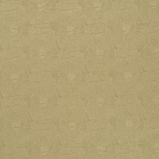 Goldrush Drapery and Upholstery Fabric by Kasmir