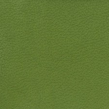 Green Animal Skins Drapery and Upholstery Fabric by Kravet