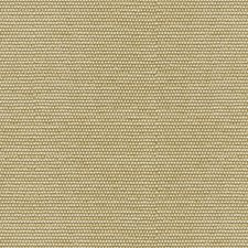 Wheat Solids Drapery and Upholstery Fabric by Groundworks