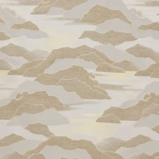 Sable Drapery and Upholstery Fabric by Scalamandre