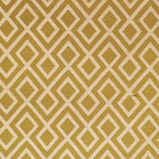 Citrus Drapery and Upholstery Fabric by RM Coco