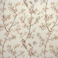 Blush Botanical Drapery and Upholstery Fabric by Kravet
