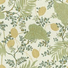 Aloe Botanical Drapery and Upholstery Fabric by Kravet