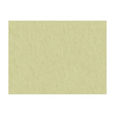 Nil Beige Solids Drapery and Upholstery Fabric by Brunschwig & Fils