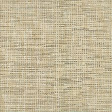 Chrome Drapery and Upholstery Fabric by Kasmir