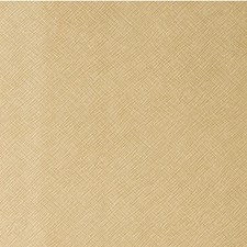 Blondie Metallic Drapery and Upholstery Fabric by Kravet