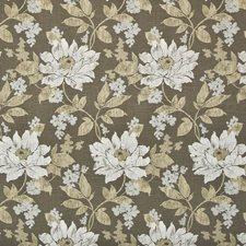 Walnut Drapery and Upholstery Fabric by Kasmir