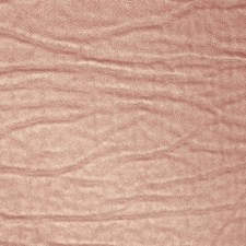 Burgundy/Red Contemporary Drapery and Upholstery Fabric by JF
