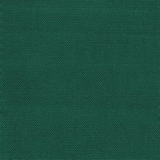 Wintergreen Drapery and Upholstery Fabric by Kasmir