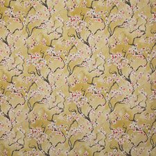 Soleil Traditional Drapery and Upholstery Fabric by Pindler