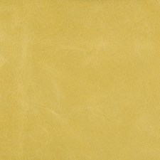 L-Haute-Citron Solids Drapery and Upholstery Fabric by Kravet