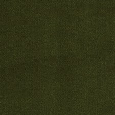 Green Grass Drapery and Upholstery Fabric by Silver State