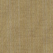 Antelope Drapery and Upholstery Fabric by RM Coco