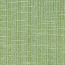 Meadow Drapery and Upholstery Fabric by Robert Allen