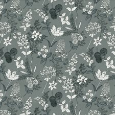 Wedgwood Drapery and Upholstery Fabric by Kasmir