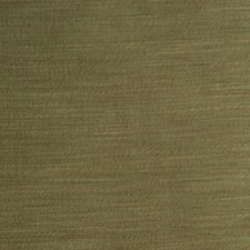 Tropic Drapery and Upholstery Fabric by RM Coco
