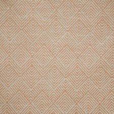 Spice Contemporary Drapery and Upholstery Fabric by Pindler