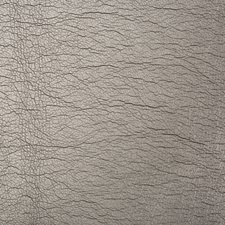 Carbon Metallic Drapery and Upholstery Fabric by Kravet