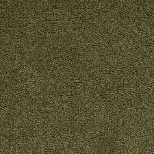 Fennel Drapery and Upholstery Fabric by Silver State