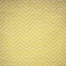 White/Yellow/Gold Traditional Drapery and Upholstery Fabric by JF