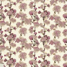 Mimosa Drapery and Upholstery Fabric by Kasmir