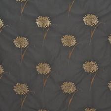 Ebony Drapery and Upholstery Fabric by Kasmir