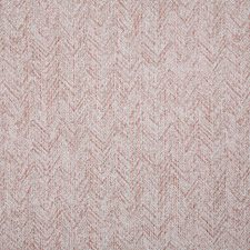 Blush Drapery and Upholstery Fabric by Pindler