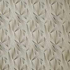 Sable Contemporary Drapery and Upholstery Fabric by Pindler
