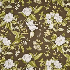 French Roast Drapery and Upholstery Fabric by Kasmir