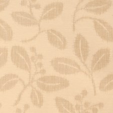 Champagne Drapery and Upholstery Fabric by Silver State