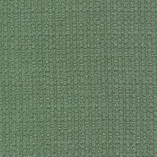 Pine Drapery and Upholstery Fabric by Kasmir