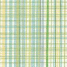 Cabana Drapery and Upholstery Fabric by Kasmir