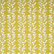 Citrus Botanical Drapery and Upholstery Fabric by Baker Lifestyle
